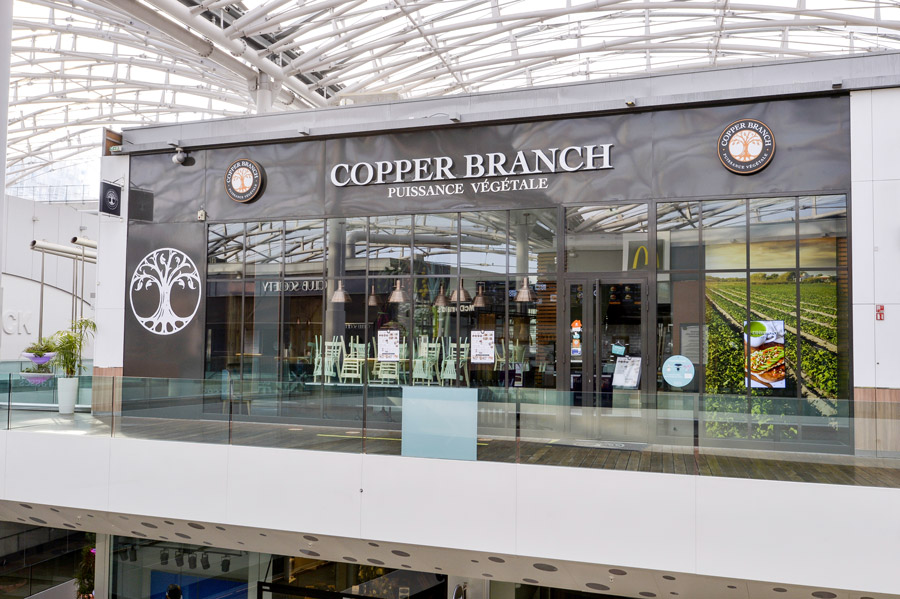 Copper Branch – Confluence